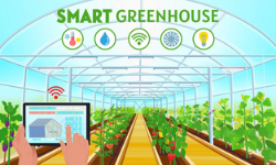 Smart Food Factory